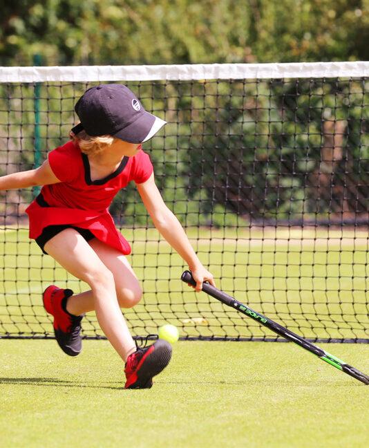 tred tennis dresses zoe alexander